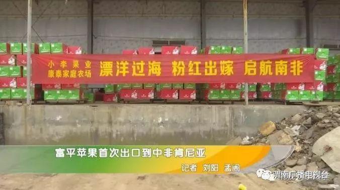 政务 正文  记者在富平县美原镇美丰果库看到,工人正在忙碌着装卸货物图片