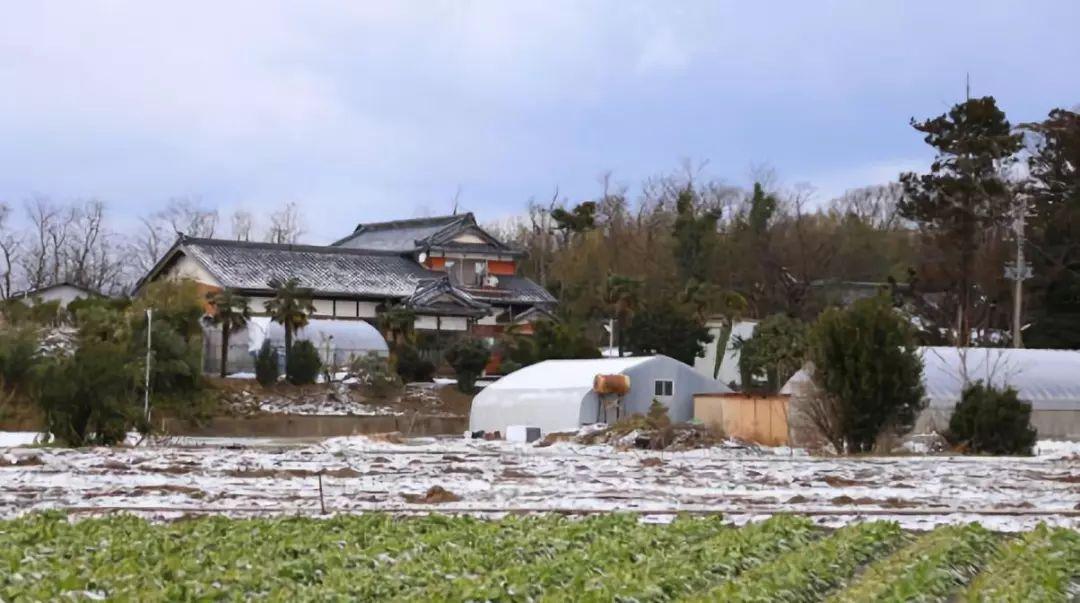 日本免费送房背后,并没有想象中那么美好 | 新京报专栏