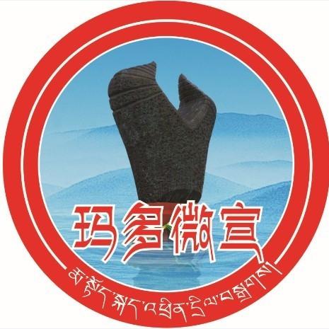 中国梦酒v6