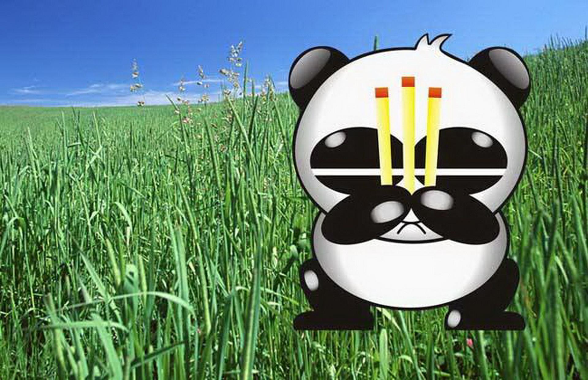 当年的天才少年,曾发明 熊猫烧香 病毒,如今过得怎么样了