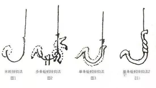 蚯蚓的挂法_【挂饵技巧】图解,蚯蚓挂饵的7种挂法