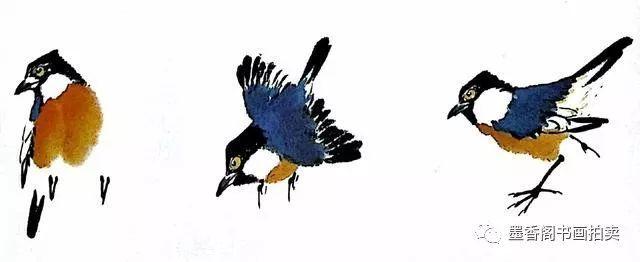 麻雀田鼠灰色是时尚比鸟类纤细的食虫山雀,背羽为绿体型,头黑且打印图片正文图片