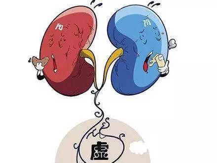 冬季養生,重在養腎