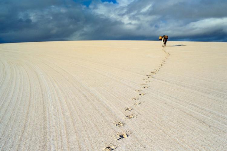 沙漠中的奇葩,本该遍地黄沙却鱼虾横行,网友调侃:它不配叫沙漠