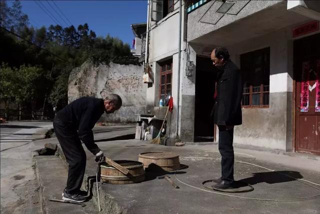 温州鱼缸批发市场一群外地青年在一个留守村靠卖甲虫带活了整个村子 温州水族批发市场 温州龙鱼第2张
