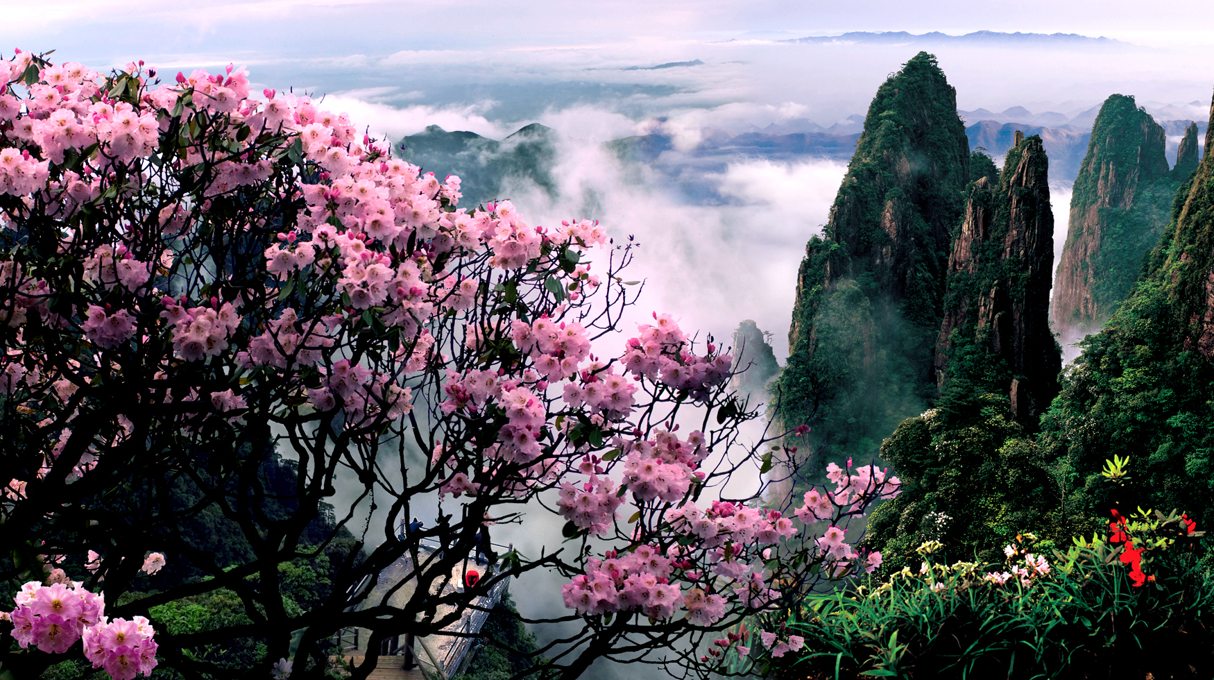 三清山风景名胜区展示了独特花岗岩石柱和山峰,栩栩如生的花岗岩造型