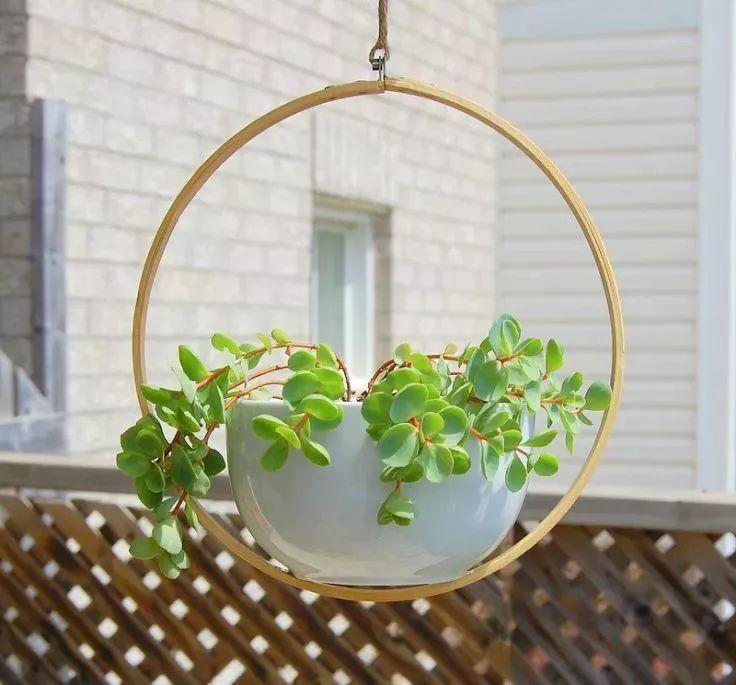 这些DIY精致的挂盆适合窗台,使盆栽植物更清新