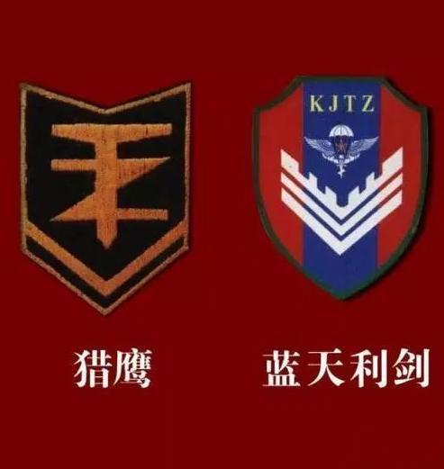"""成都军区""""西南猎鹰"""";最后是空降兵的""""蓝天利剑图片"""