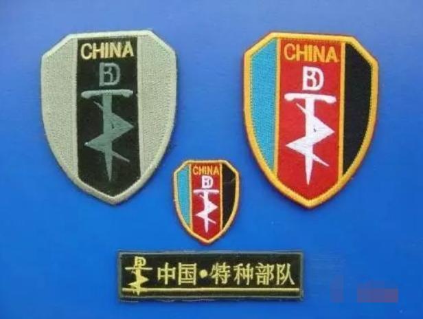 中国特种部队通用臂章——闪电利剑!图片