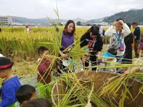 报名啦 临海安琪国际幼儿园2019年春季招生火热开始啦