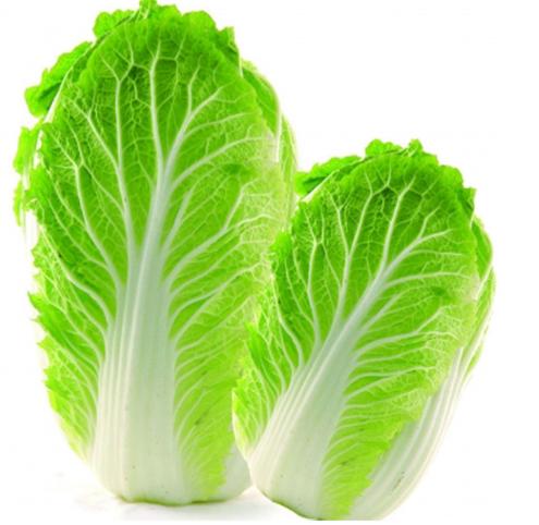 大白菜减肥法成功者图片