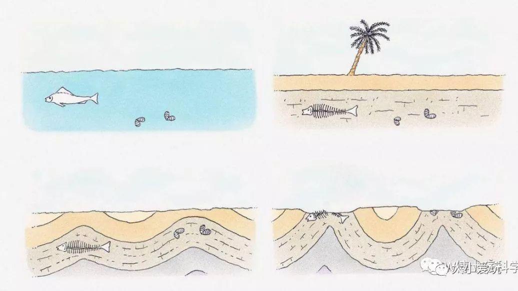 形成酸雨的原因之一_从而找到恐龙化石与各种矿物形成的原因!