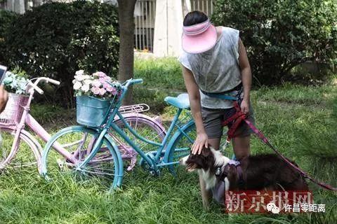 不光是废旧自行车,我们生活当中还有很多不知道该如何处理的废旧物品图片