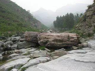 民间故事:老树下放棺材,风水先生一话,看透因果