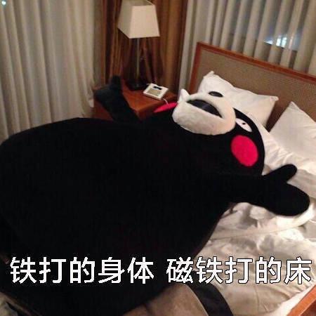 熊本熊表情包:只想在床上躺到地老天荒图片