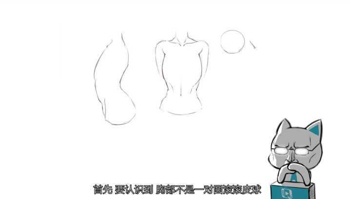 如何画好胸部?比女人更了解胸部的男老师教你画胸部
