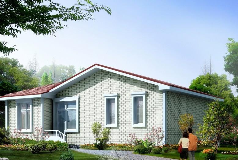 漂亮农村一层别墅设计图,11 8米小户型自建房全套施工图
