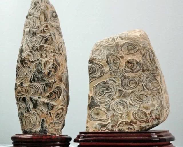 一种名贵稀少的奇石,非常珍贵,深受国内外赏石名家青睐