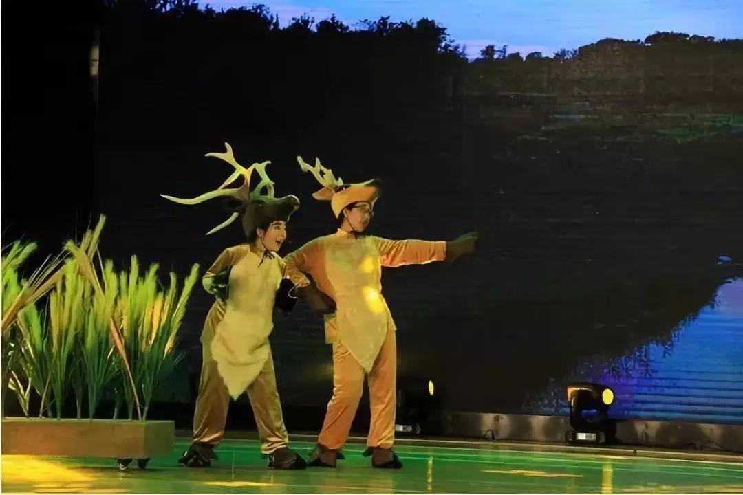 北京麋鹿夜莺实验中心《小生态回家记》《麋鹿之歌》金丝猴v麋鹿图片