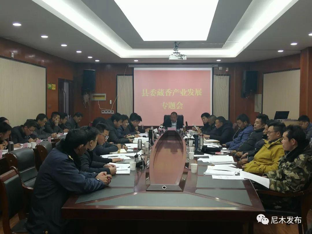尼木县藏香产业发展专题会