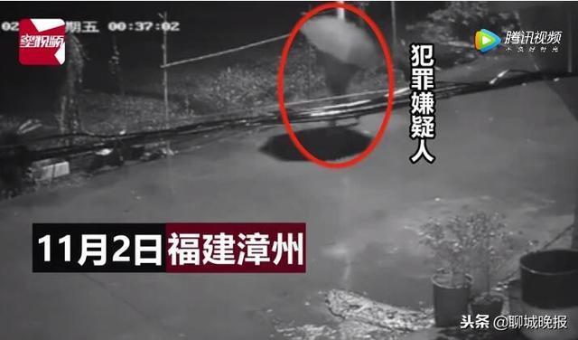 2018年11月2日凌晨,福建漳州华安县发生了一起恶性命案,5岁女孩和29