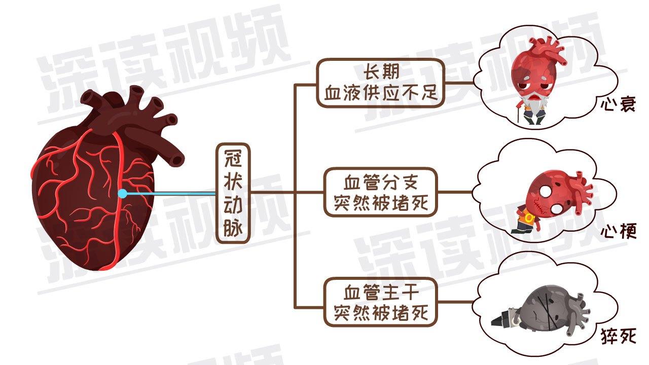 【心力衰竭细胞最常见于】_心力衰竭细胞_怎么回... -大众养生网