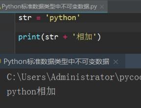 python 读取变量字符_python try except
