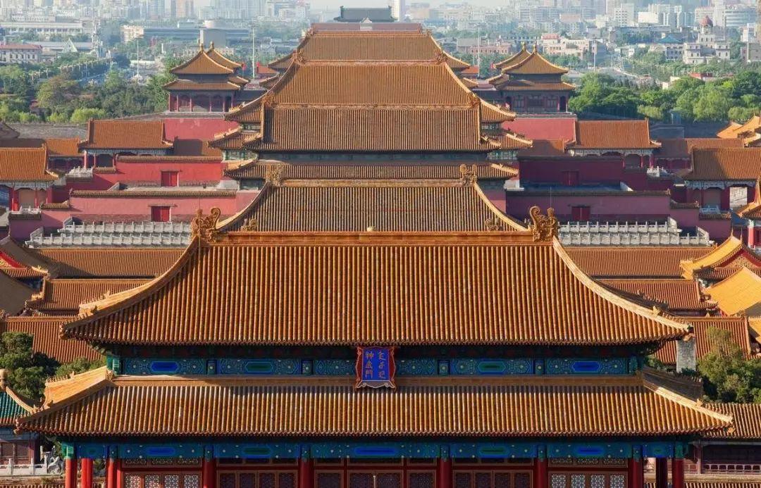 故宫的屋顶上,为何没有鸟粪? | 感叹古人智慧!_鸟类