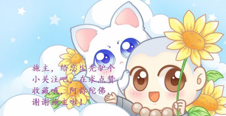 王者荣耀花木兰冠军皮肤,rw侠官博,ba黑凤梨770想退役图片