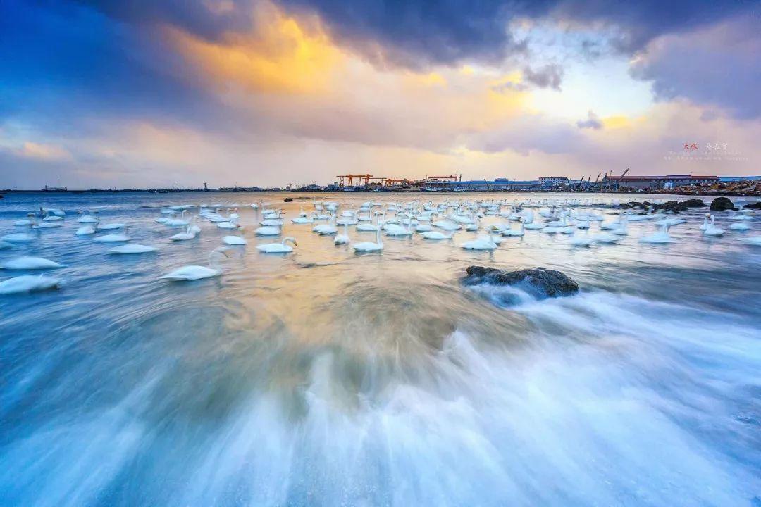 去热辣的海岛沙滩,感受在冬天里穿短袖的乐趣?图片