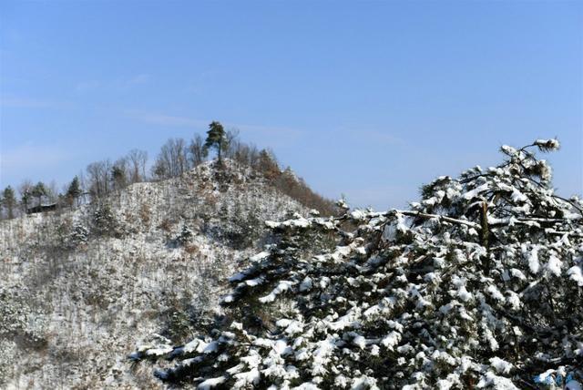 飞雪润古都,2018年西安最后一场雪景你赏了吗?