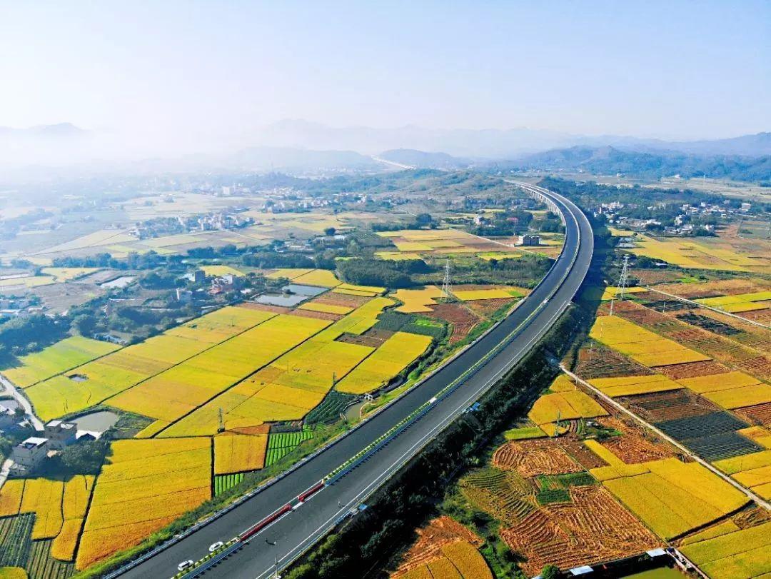 广东高速公路地图