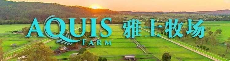 "Aquis雅士牧场赛马新闻:速度赛马""武汉标准""有望全国推广"