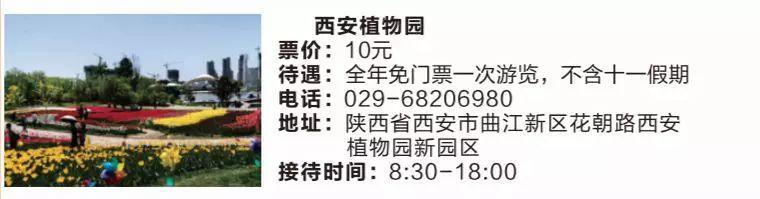 好消息!2019年陕西旅游年票开始预订了,新增了不少景点!