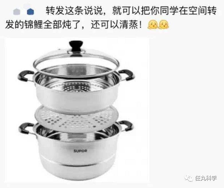 锦鲤是如何从中国美食变成表情包的?图片