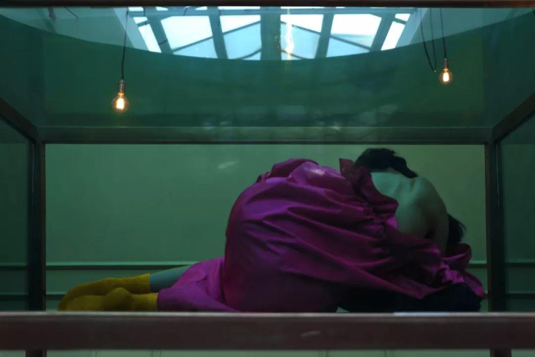 倪妮 | 美人破茧,幻化成蝶。