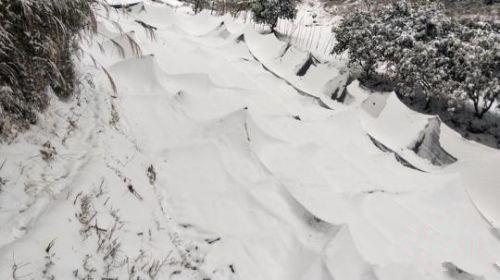 贵州发生持续低温凝冻灾害,农作物受灾严重!