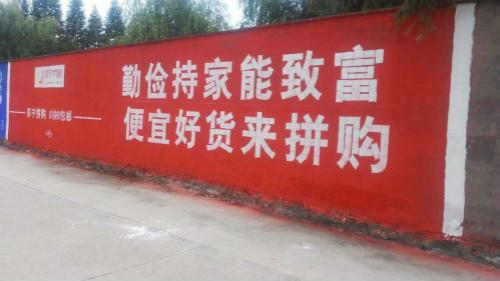 生态共振下的苏宁拼购 正在将自己推向市场另一极
