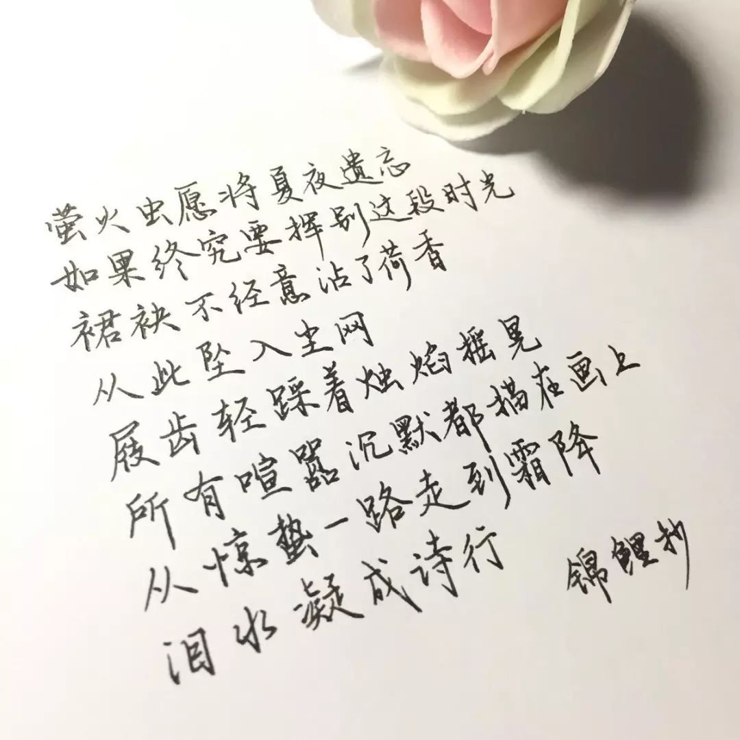 锦鲤抄_找歌谱网触屏版