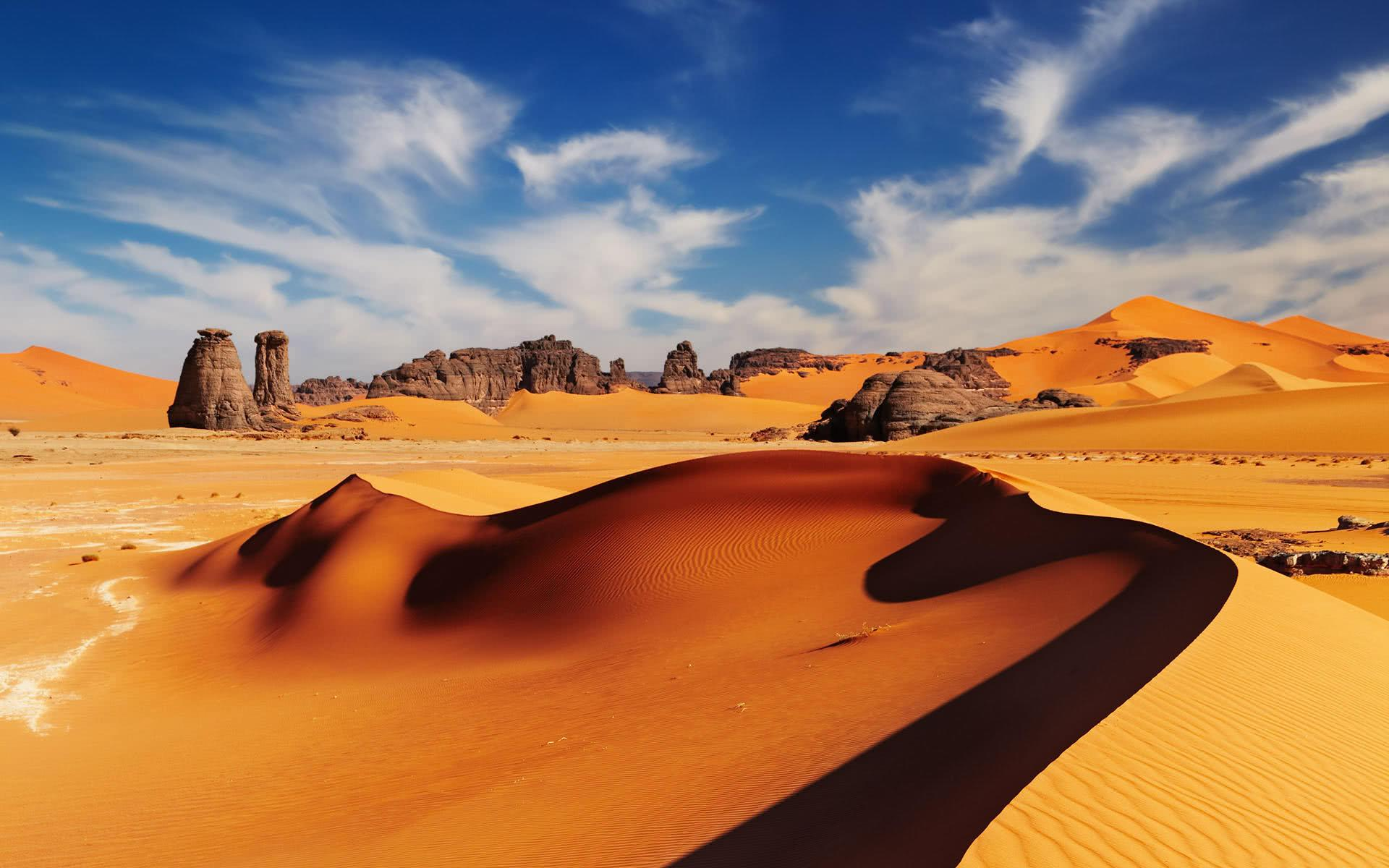 沙漠里发现一条500年前的管子,里面的东西让考古学家惊喜万分