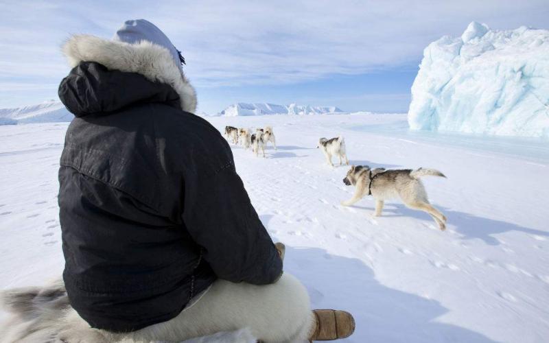 住在北极的因纽特人,长着黑头发黄皮肤,以便存活让妻子招待外人 作者: 来源于:旅程奇事
