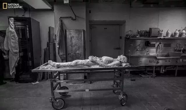 """遗体被切成 27000 片,她用最""""另类""""的方式完成永生-華夏娛樂360"""
