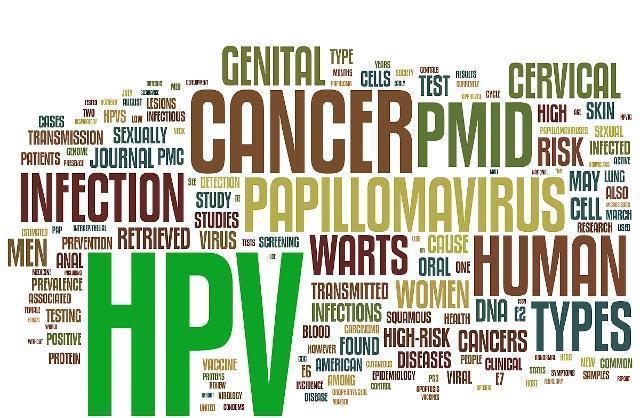 男性感染HPV的重要危险因素有哪些?
