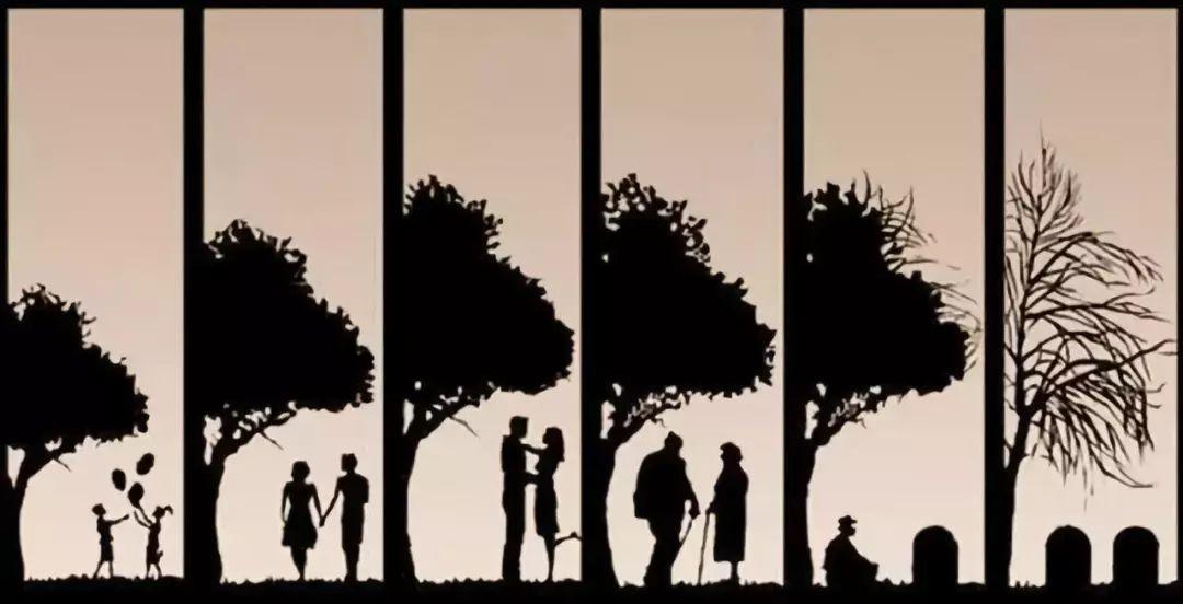 6张图把你的一辈子说的明明白白精辟!