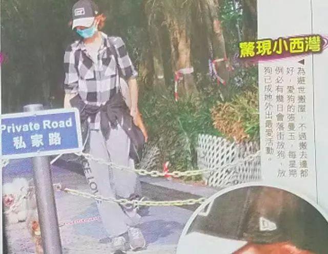 54岁张曼玉搬离豪宅,回香港平民区定居!独自现身公园遛狗显孤独(图19)