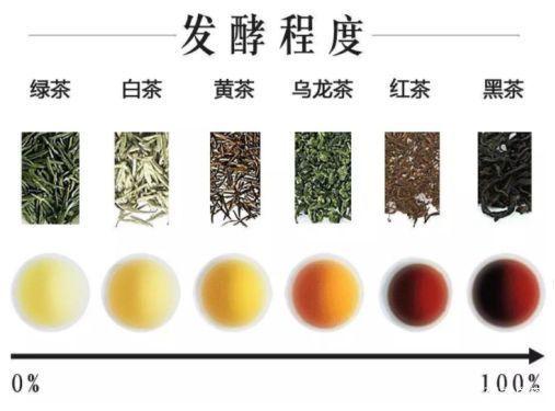 """白茶""""热门问题""""解答看完基本掌握白茶要点_福鼎"""