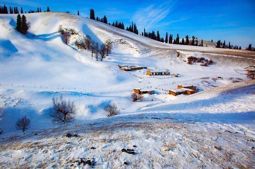 冬日线上影展 摄影家吴强 冬季的那拉提,一定会给新疆摄影人带来惊喜