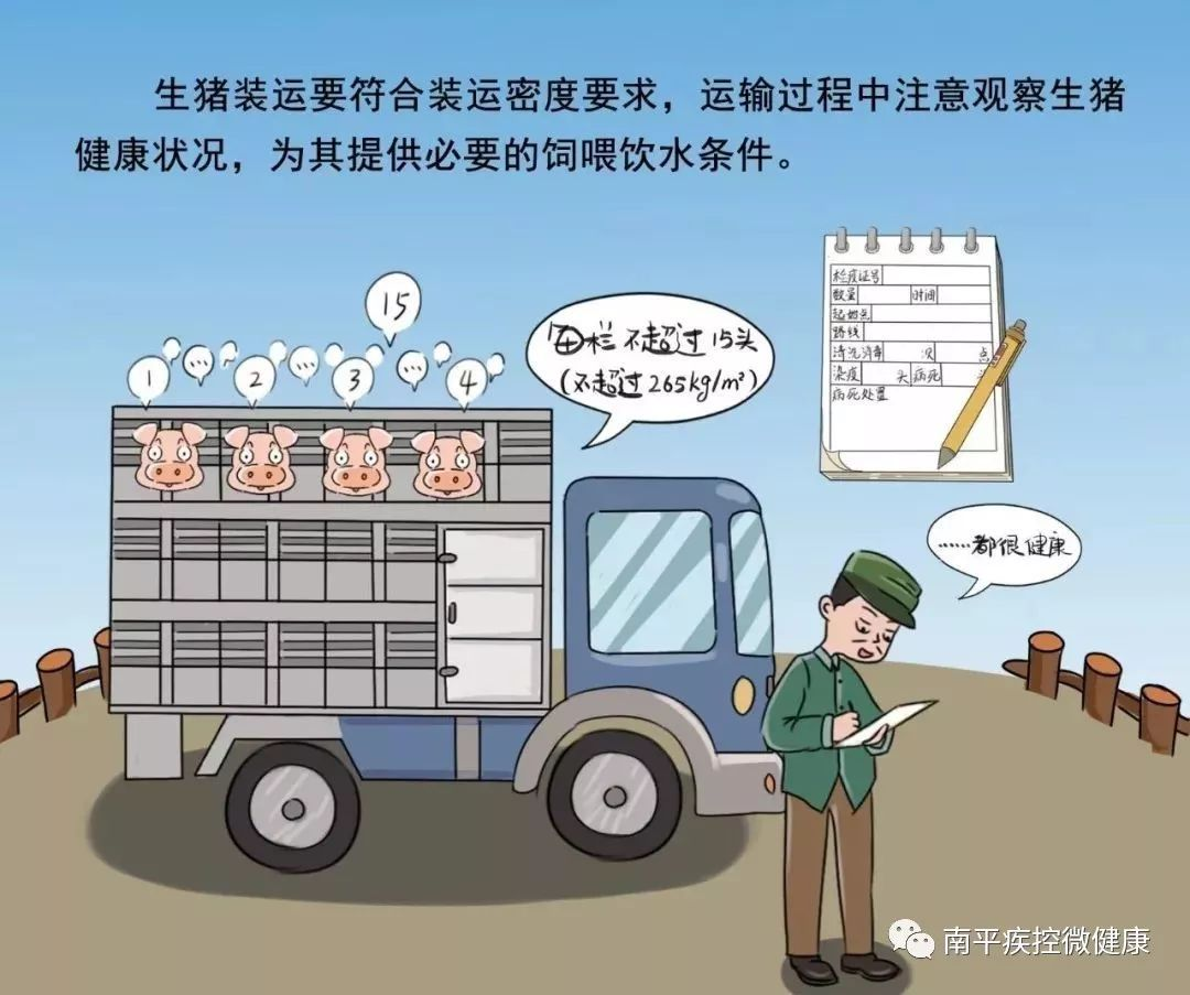 甘肃省庆城县发生非洲猪瘟疫情,莫恐慌看科普!_防控图片