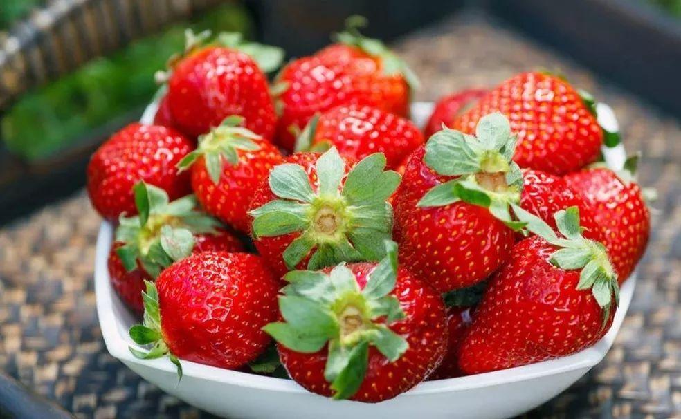 """【视频】草莓您吃对了吗?让专家帮您""""盖特""""一下~~!"""