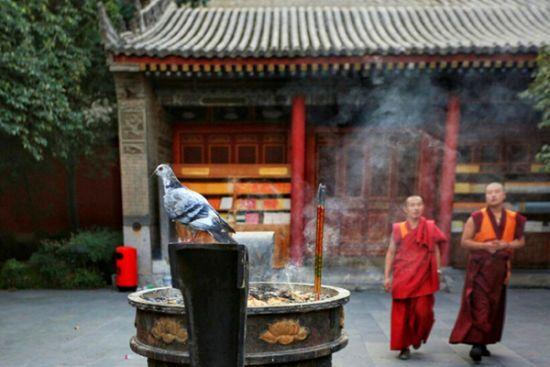 世界上只有两尊这样的佛像,一个在拉萨大昭寺,另一个就在西安